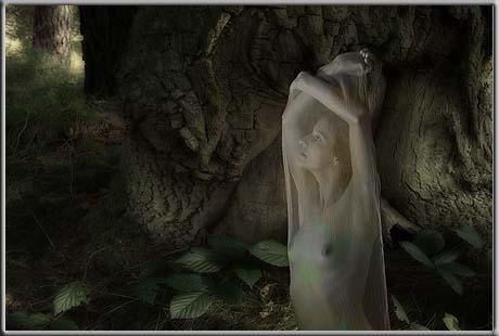 Wood Ghost
